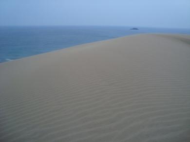 鳥取砂丘の写真